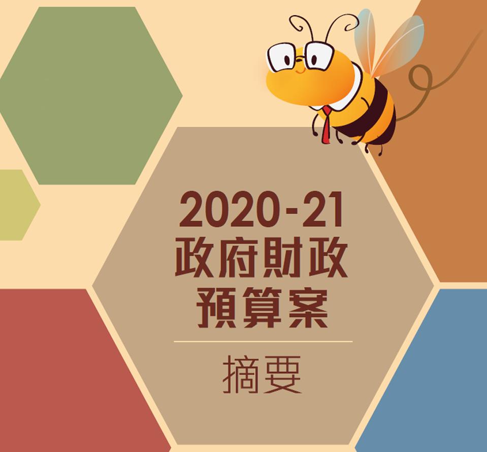 2020 -21政府財政預算案摘要