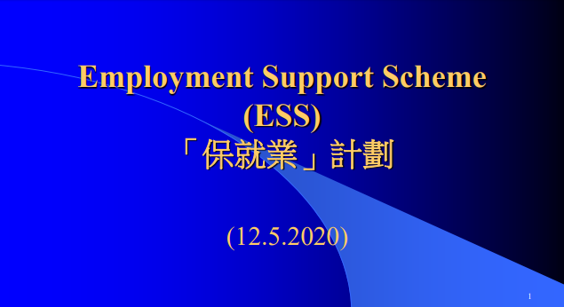 Employment Support Scheme (ESS)_PPT